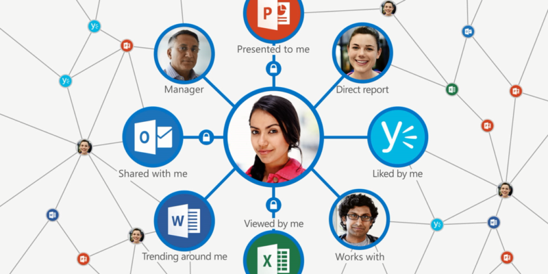 Delve into Office 365
